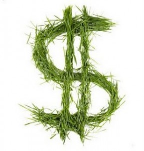 dolar-verde