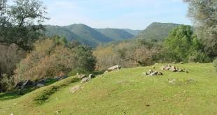panoramica Sierra